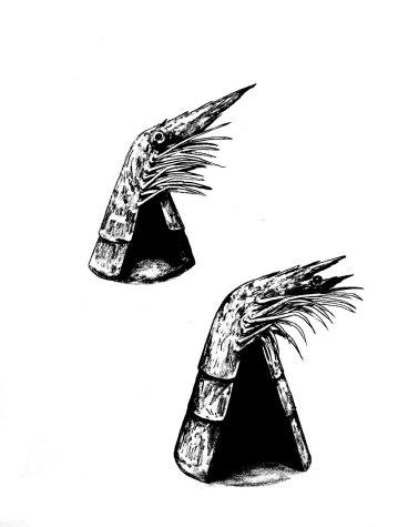 Guaridas